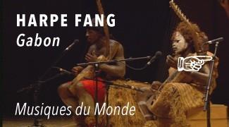 Concert Harpe Fang