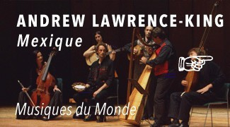 Concert Lawrence King Harpe